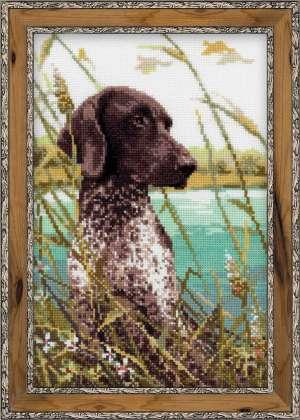 1043 Охотничья собака